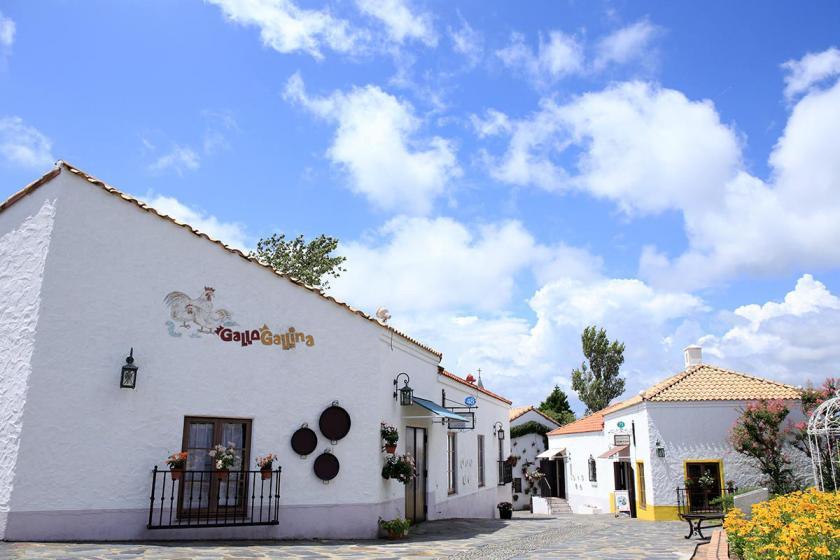 【志摩スペイン村チケット付】情熱の国スペインを五感で体験。彩り豊かで非日常な1日を楽しむプラン