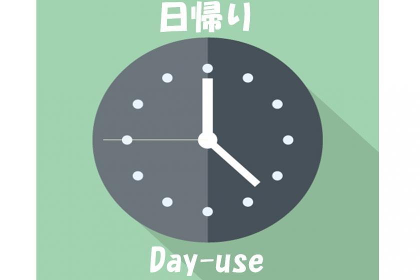 【対象外:Go To】【カレービュフェランチ付き】9時間滞在!テレワーク応援プラン(9時IN/18時OUT)