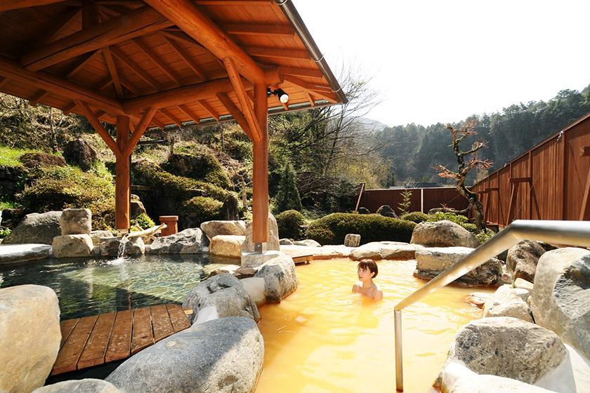 【入浴チケットつき】地元天然温泉銭湯と神秘の天然炭酸泉湯めぐりプラン