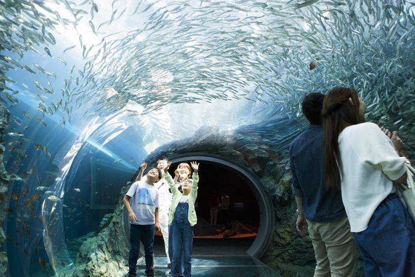 いもり池散策ツアー&上越市立水族博物館うみがたりチケット付きプラン