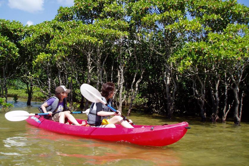 【얀 바루 세계 자연 유산 등록 기념】 3 개의 활동보다 선택할 잖아 바루 만끽 스테이