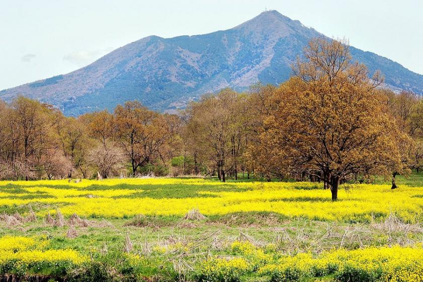Rediscover the charm of Ibaraki ♪ Get power at Mt. Tsukuba! (Stay without meals)