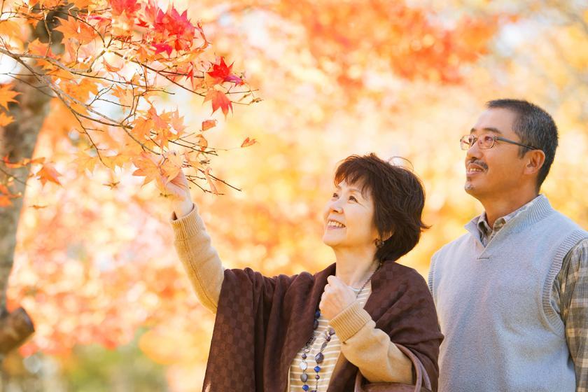 【敬老の日プラン】おじいちゃん・おばあちゃんを敬う…料理長こだわり「特別・大和懐石」朝夕付・個室食