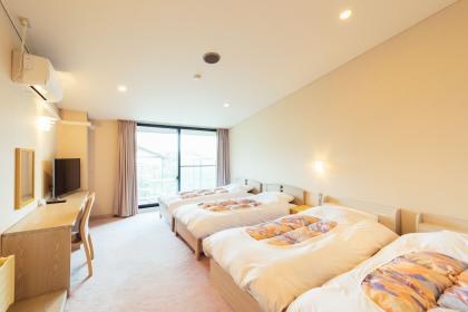 Western-style room